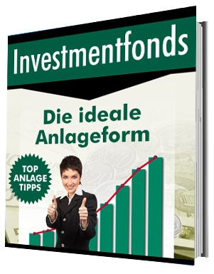 Investmendfonds - Die ideale Analgeform eBook